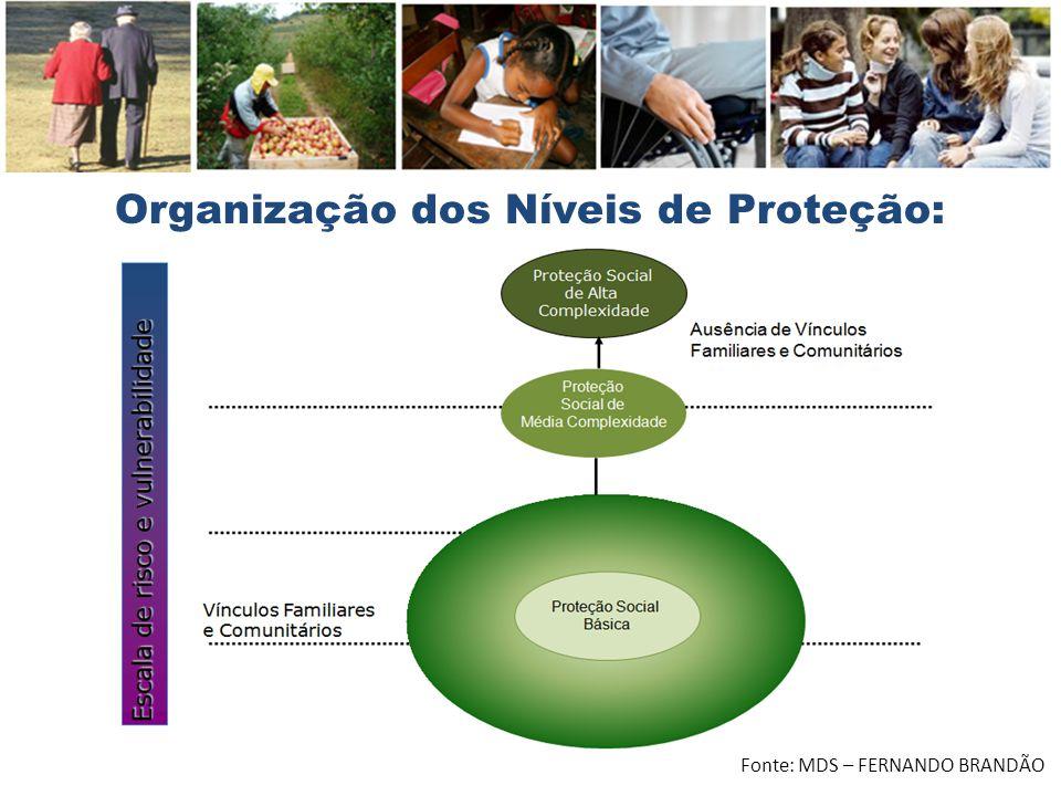 Organização dos Níveis de Proteção: Fonte: MDS – FERNANDO BRANDÃO