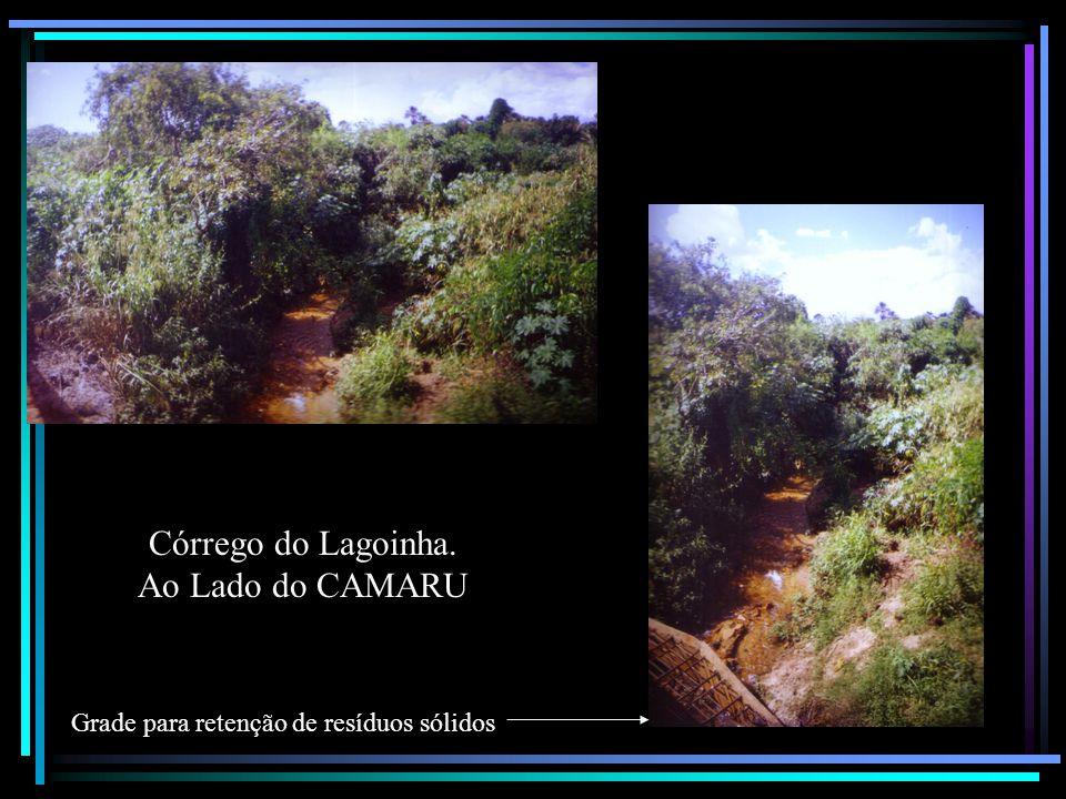Córrego do Lagoinha. Ao Lado do CAMARU Grade para retenção de resíduos sólidos