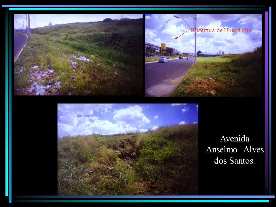 Avenida Anselmo Alves dos Santos. Prefeitura de Uberlândia