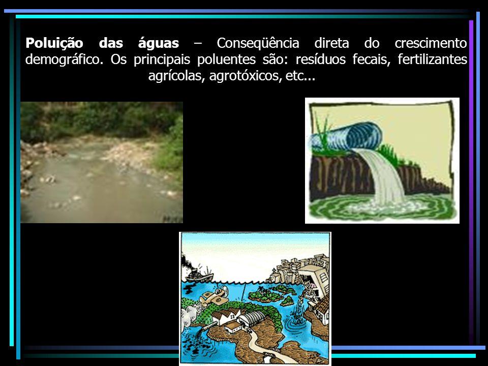 Poluição do solo – Principais poluentes do solo são: fertilizantes e agrotóxicos e o lixo domestico.