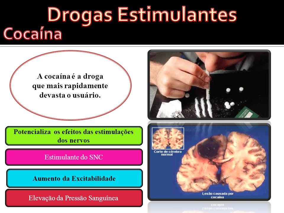Drogas Alucinantes A cocaína é a droga que mais rapidamente devasta o usuário.