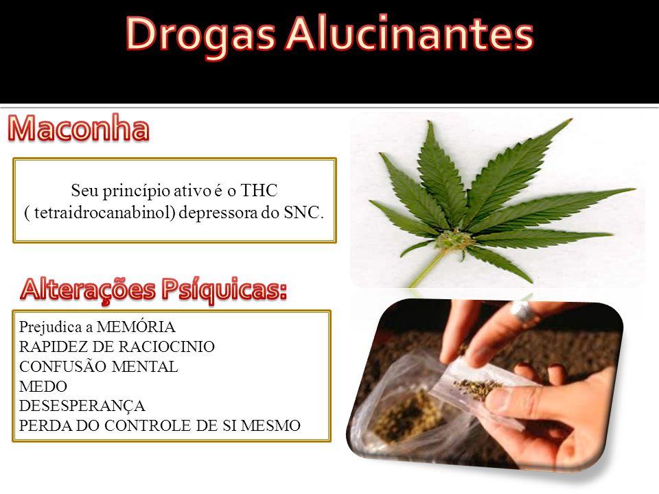 Seu princípio ativo é o THC ( tetraidrocanabinol) depressora do SNC.