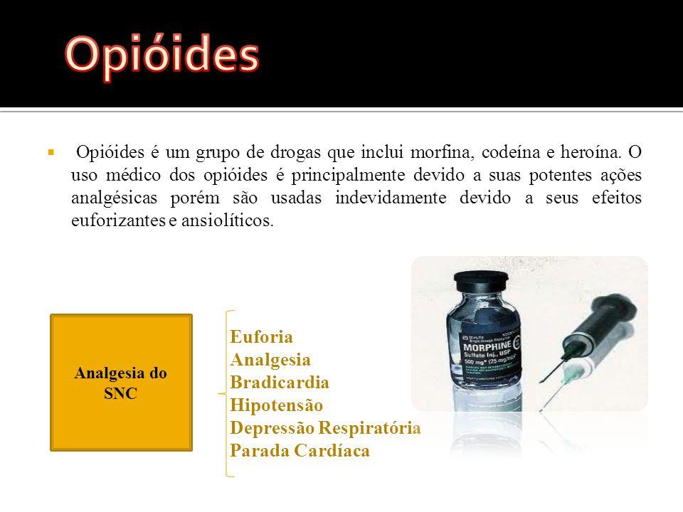  Opióides é um grupo de drogas que inclui morfina, codeína e heroína.
