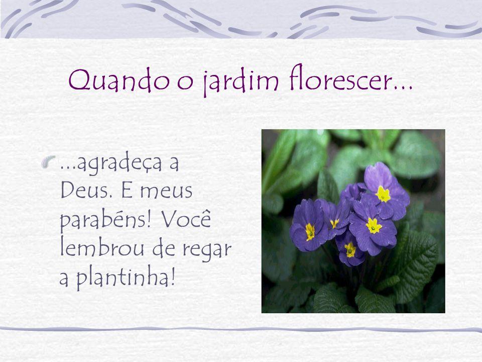 Quando o jardim florescer......agradeça a Deus. E meus parabéns! Você lembrou de regar a plantinha!