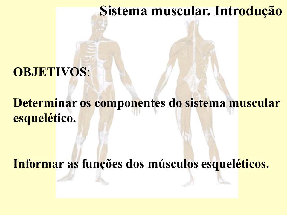 Resumo das diferenças entre músculo estriado esquelético, cardíaco e liso.