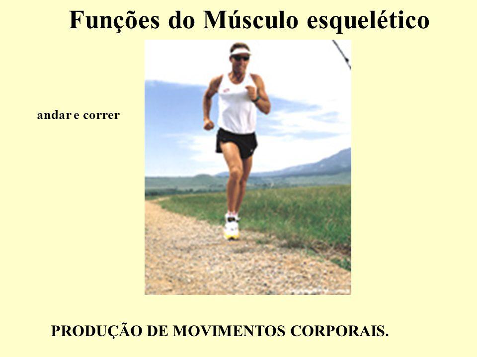 Funções do Músculo esquelético andar e correr PRODUÇÃO DE MOVIMENTOS CORPORAIS.