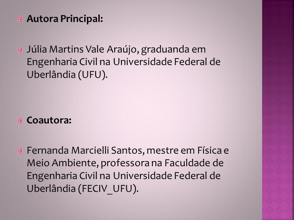 Autora Principal: Júlia Martins Vale Araújo, graduanda em Engenharia Civil na Universidade Federal de Uberlândia (UFU).