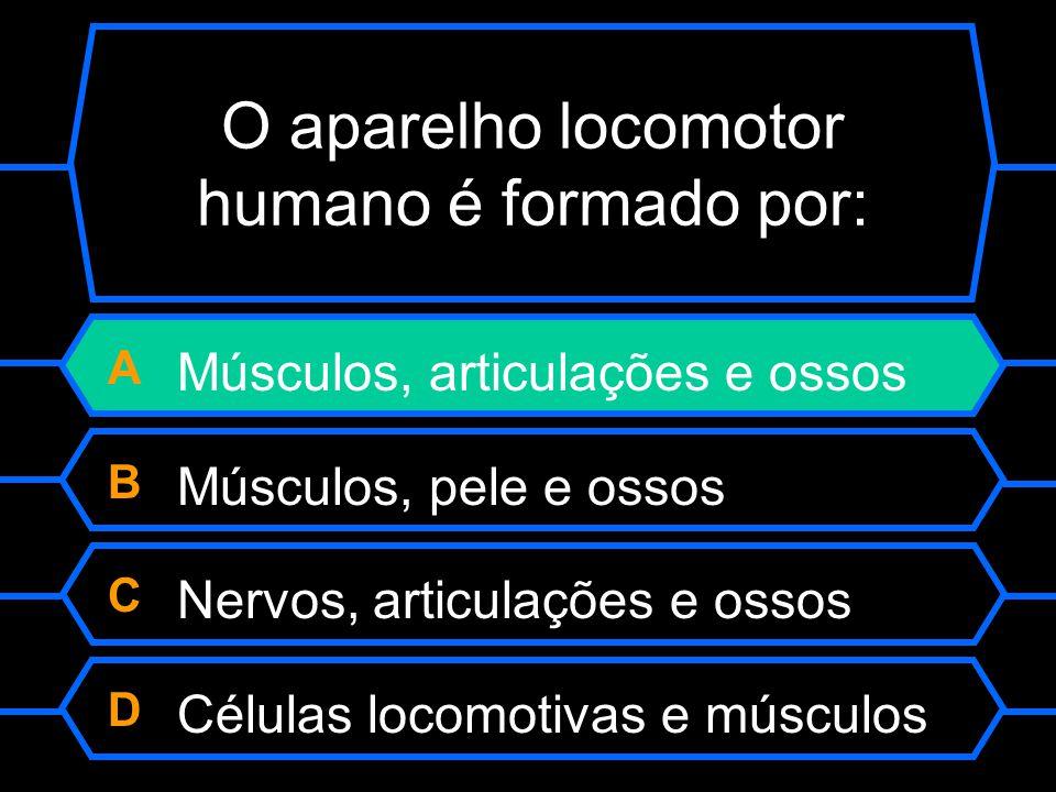 O aparelho locomotor humano é formado por: A Músculos, articulações e ossos B Músculos, pele e ossos C Nervos, articulações e ossos D Células locomoti