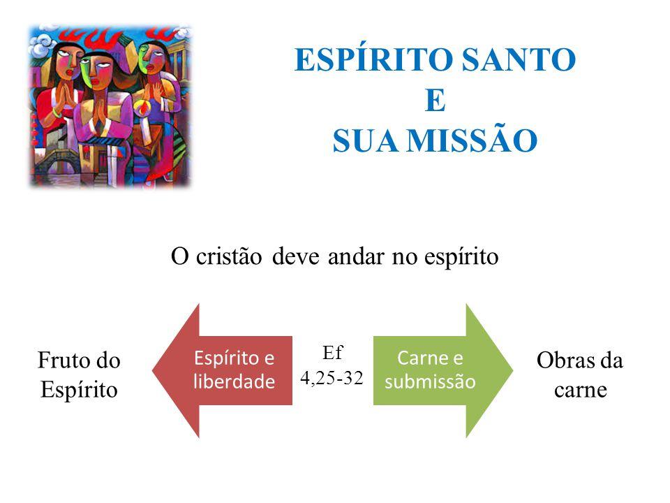 ESPÍRITO SANTO E SUA MISSÃO Espírito e liberdade Carne e submissão O cristão deve andar no espírito Fruto do Espírito Obras da carne Ef 4,25-32