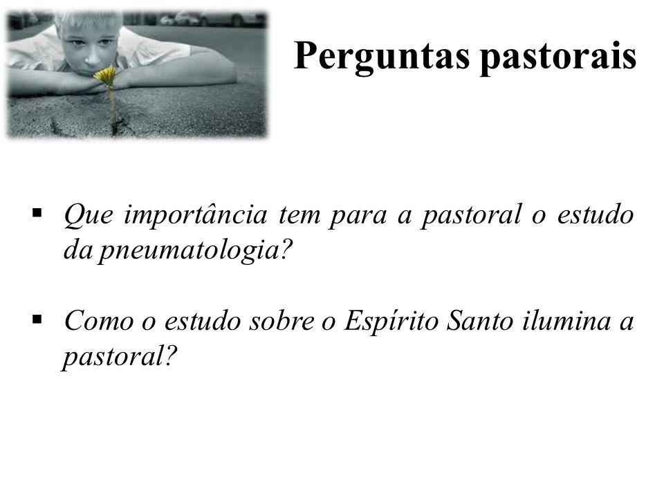 Perguntas pastorais  Que importância tem para a pastoral o estudo da pneumatologia?  Como o estudo sobre o Espírito Santo ilumina a pastoral?
