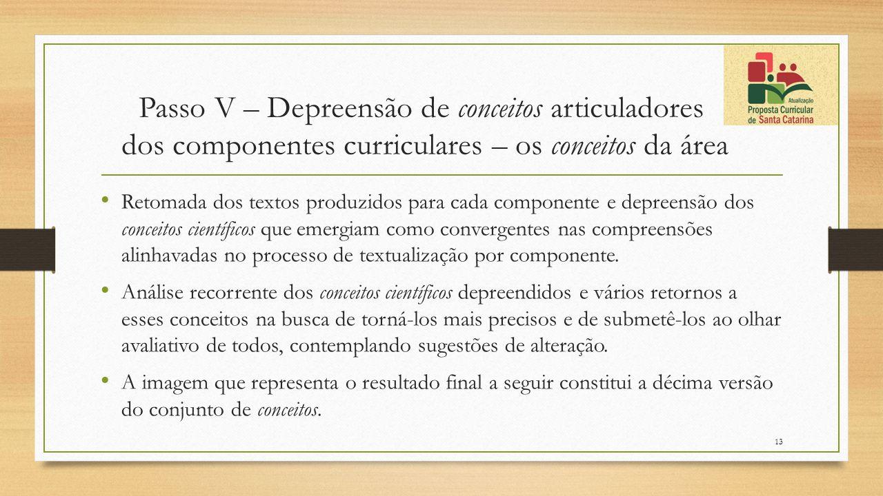 Passo V – Depreensão de conceitos articuladores dos componentes curriculares – os conceitos da área Retomada dos textos produzidos para cada component