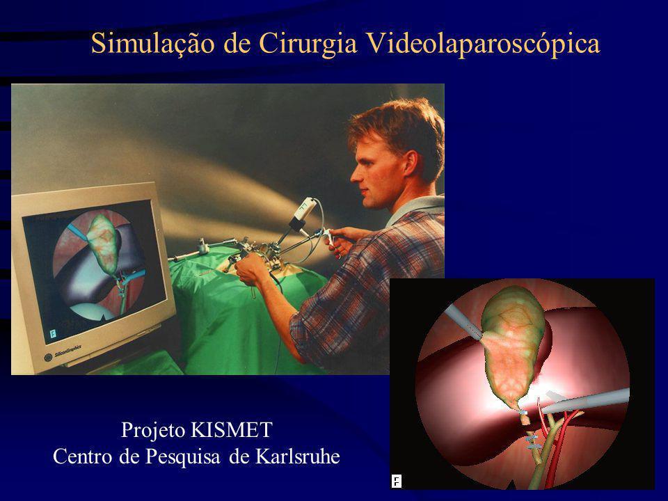 Simulação de Cirurgia Videolaparoscópica Projeto KISMET Centro de Pesquisa de Karlsruhe