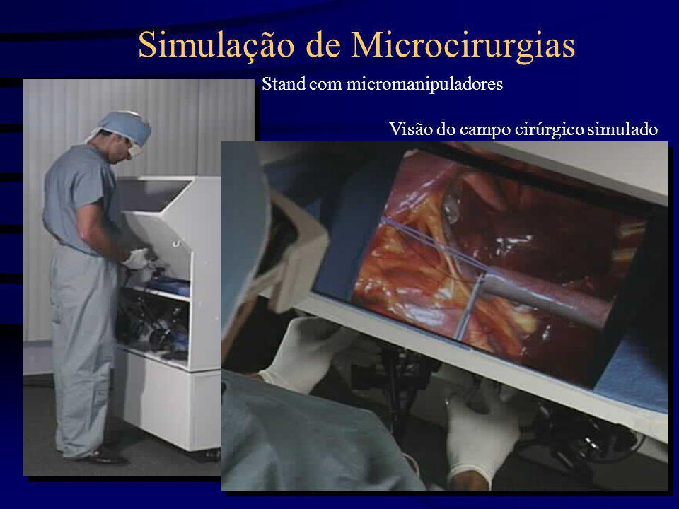 Simulação de Microcirurgias Stand com micromanipuladores Visão do campo cirúrgico simulado