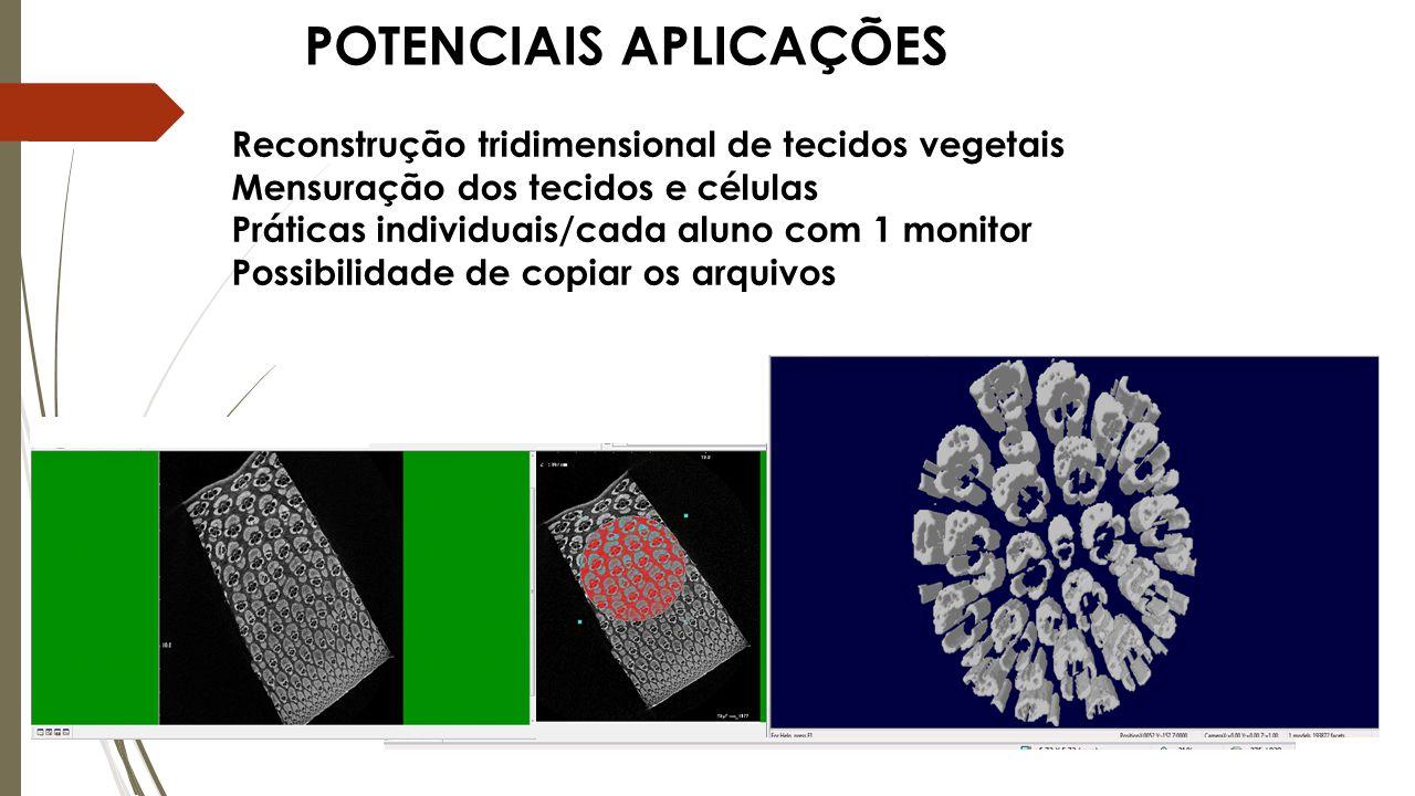 POTENCIAIS APLICAÇÕES Reconstrução tridimensional de tecidos vegetais Mensuração dos tecidos e células Práticas individuais/cada aluno com 1 monitor Possibilidade de copiar os arquivos