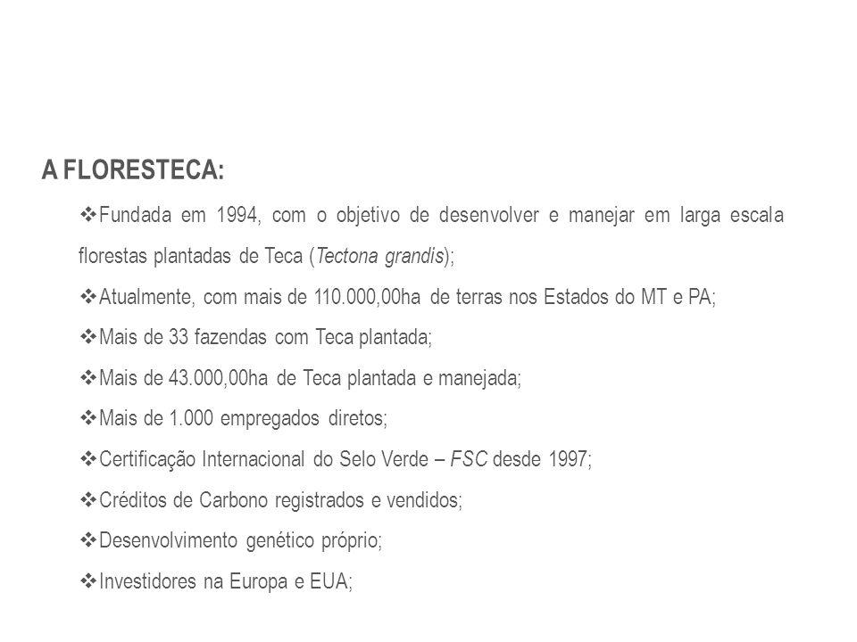 A FLORESTECA:  Fundada em 1994, com o objetivo de desenvolver e manejar em larga escala florestas plantadas de Teca ( Tectona grandis );  Atualmente
