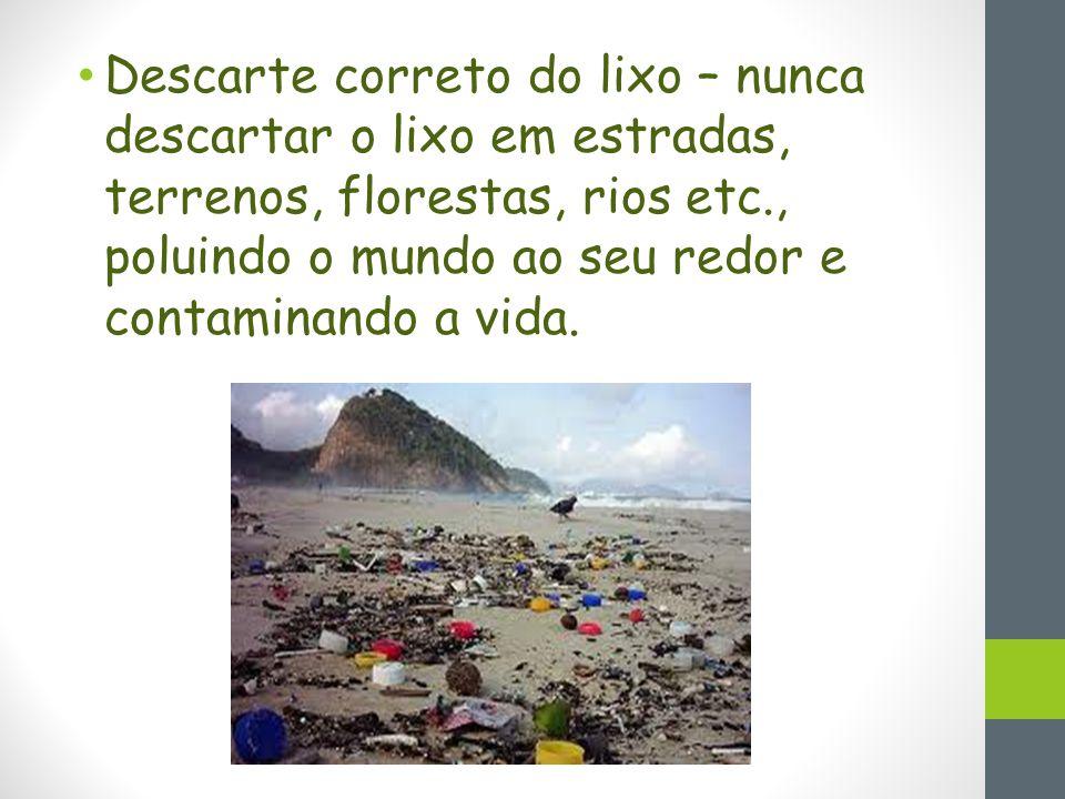 Descarte correto do lixo – nunca descartar o lixo em estradas, terrenos, florestas, rios etc., poluindo o mundo ao seu redor e contaminando a vida.