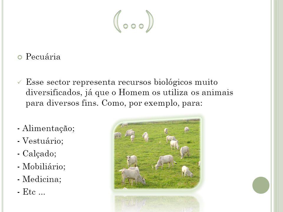Pecuária Esse sector representa recursos biológicos muito diversificados, já que o Homem os utiliza os animais para diversos fins. Como, por exemplo,