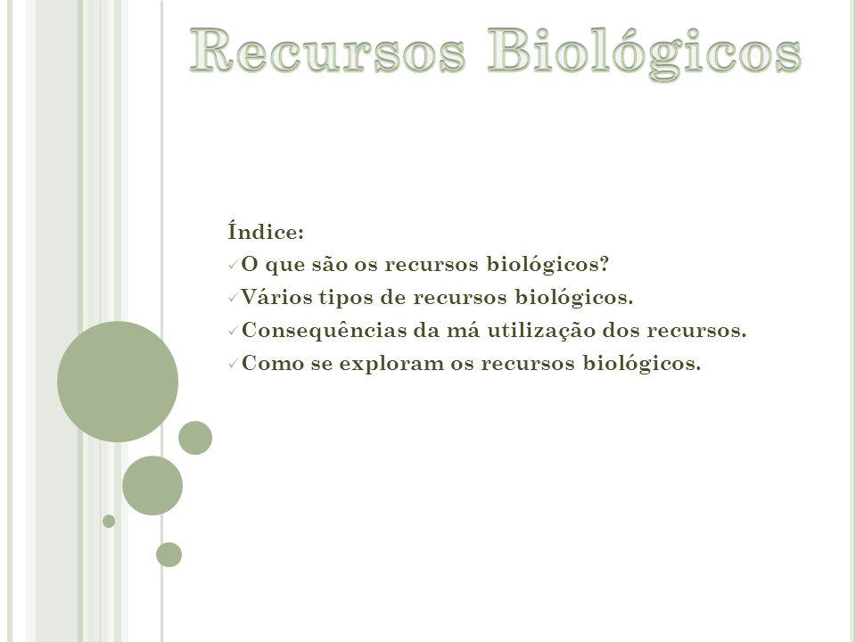 Índice: O que são os recursos biológicos? Vários tipos de recursos biológicos. Consequências da má utilização dos recursos. Como se exploram os recurs