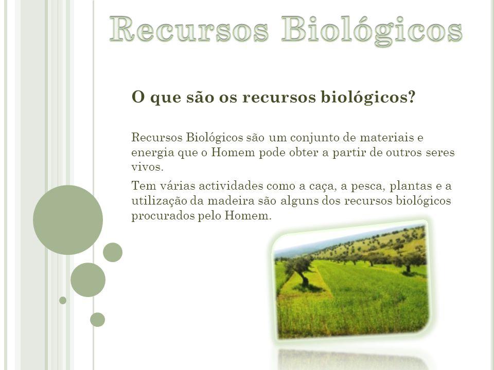 O que são os recursos biológicos? Recursos Biológicos são um conjunto de materiais e energia que o Homem pode obter a partir de outros seres vivos. Te