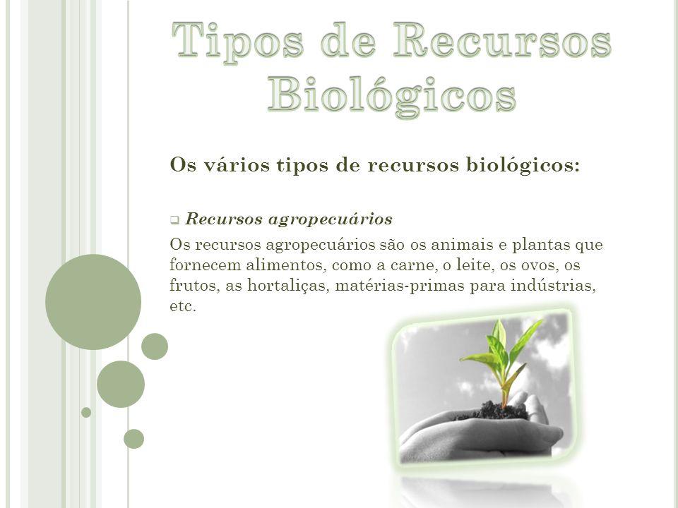 Os vários tipos de recursos biológicos:  R Recursos agropecuários Os recursos agropecuários são os animais e plantas que fornecem alimentos, como a