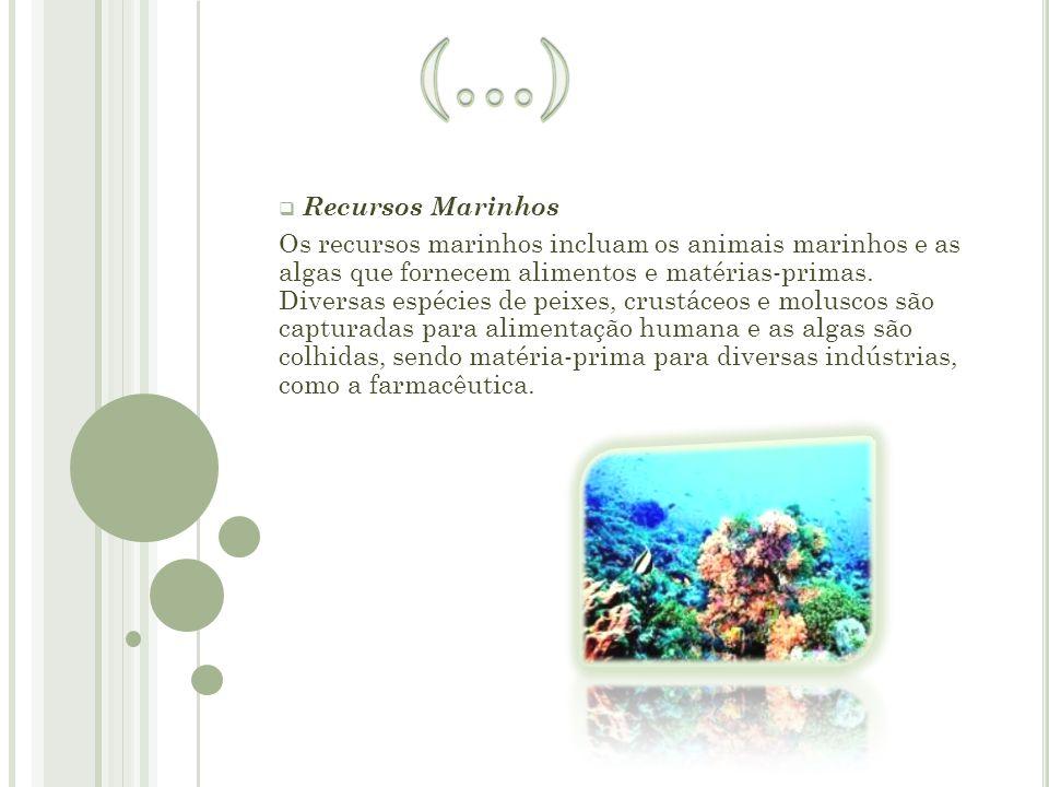  R Recursos Marinhos Os recursos marinhos incluam os animais marinhos e as algas que fornecem alimentos e matérias-primas. Diversas espécies de peix
