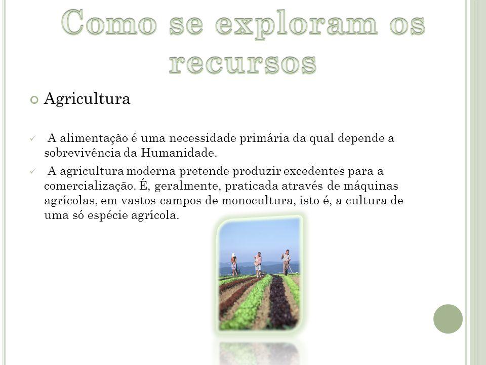 Agricultura A alimentação é uma necessidade primária da qual depende a sobrevivência da Humanidade. A agricultura moderna pretende produzir excedentes