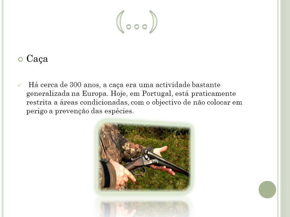 Caça Há cerca de 300 anos, a caça era uma actividade bastante generalizada na Europa. Hoje, em Portugal, está praticamente restrita a áreas condiciona