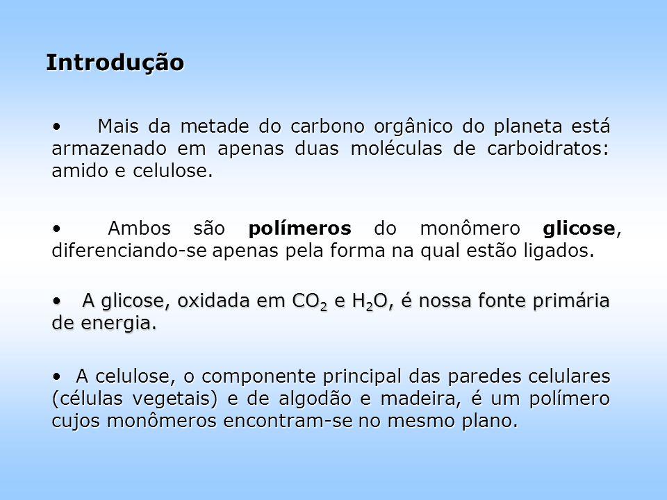 Introdução Mais da metade do carbono orgânico do planeta está armazenado em apenas duas moléculas de carboidratos: amido e celulose.