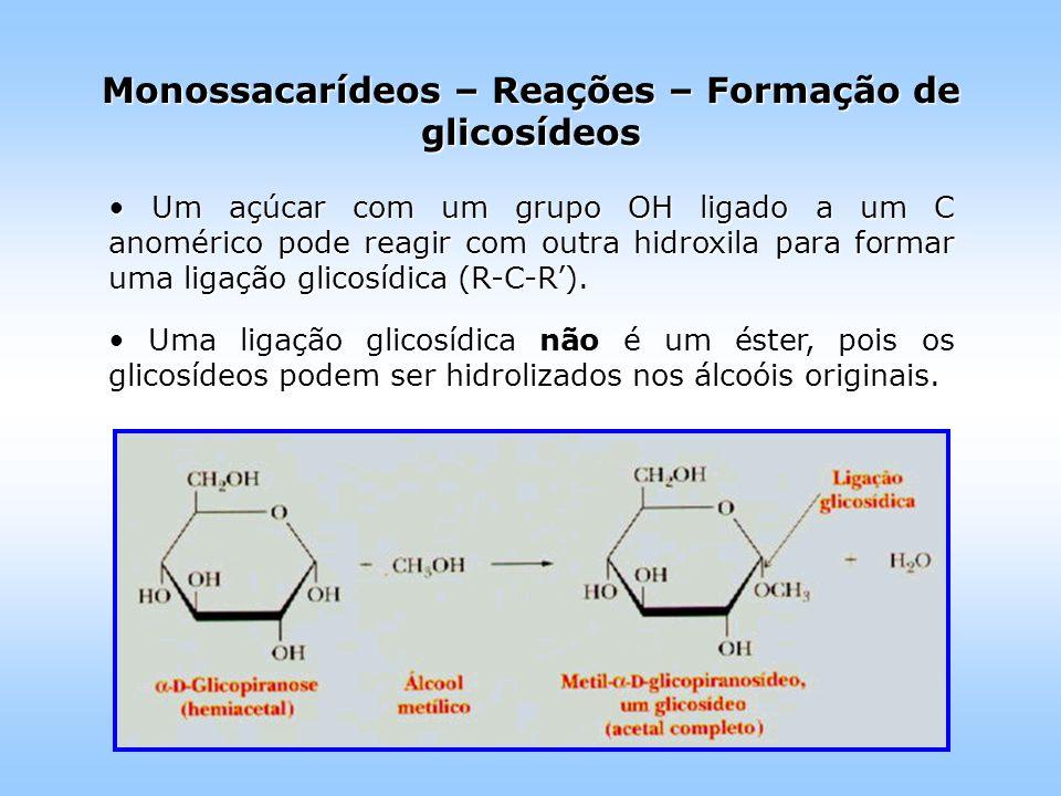 Um açúcar com um grupo OH ligado a um C anomérico pode reagir com outra hidroxila para formar uma ligação glicosídica (R-C-R').