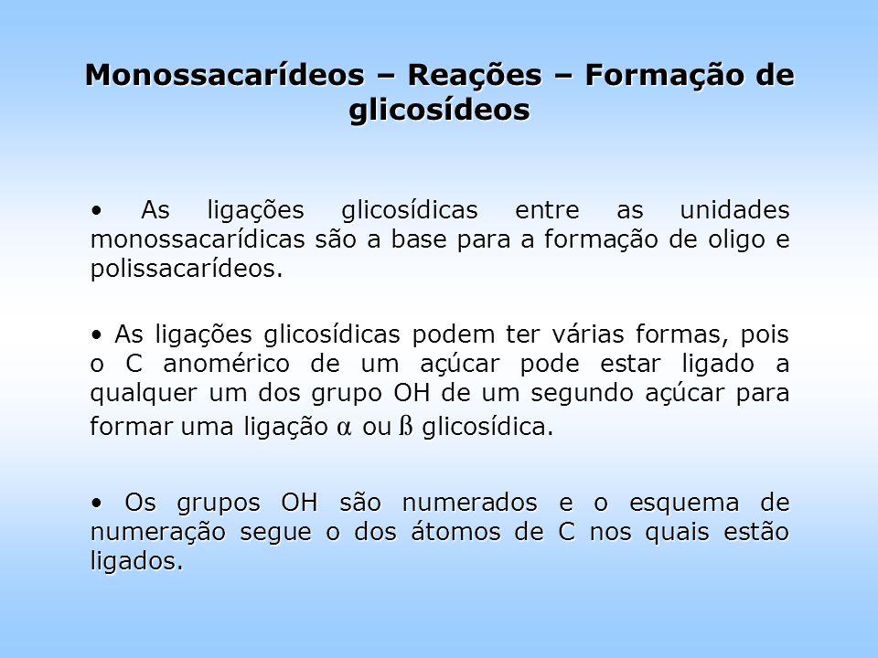 As ligações glicosídicas entre as unidades monossacarídicas são a base para a formação de oligo e polissacarídeos.