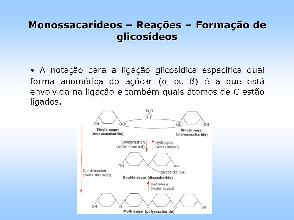 A notação para a ligação glicosídica especifica qual forma anomérica do açúcar ( α ou ß) é a que está envolvida na ligação e também quais átomos de C estão ligados.