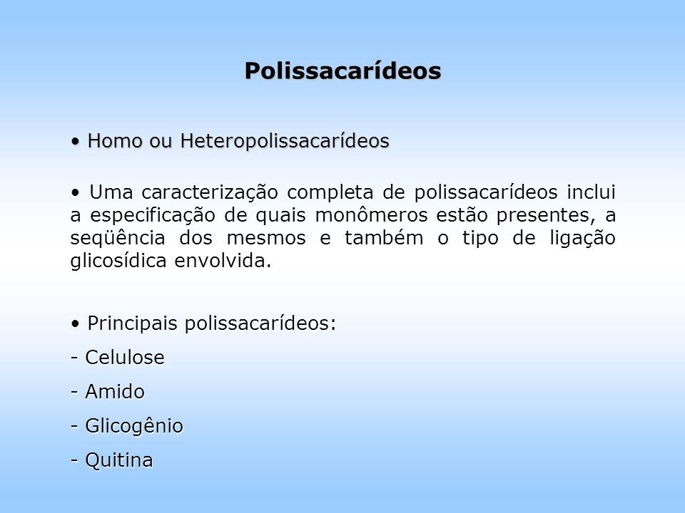 Polissacarídeos Homo ou Heteropolissacarídeos Homo ou Heteropolissacarídeos Uma caracterização completa de polissacarídeos inclui a especificação de quais monômeros estão presentes, a seqüência dos mesmos e também o tipo de ligação glicosídica envolvida.