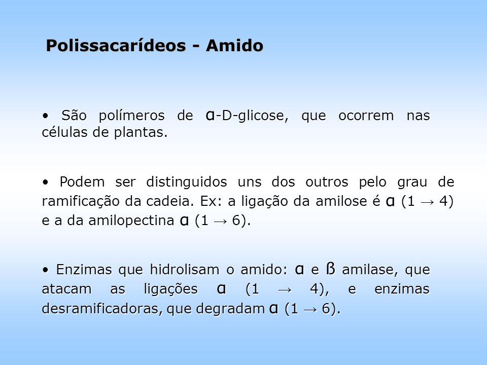 Polissacarídeos - Amido São polímeros de α -D-glicose, que ocorrem nas células de plantas.