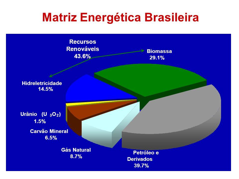 Matriz Energética Brasileira Biomassa 29.1% Petróleo e Derivados 39.7% Gás Natural 8.7% Carvão Mineral 6.5% Hidreletricidade 14.5% Urânio (U 3 O 2 ) 1.5% Recursos Renováveis 43.6%