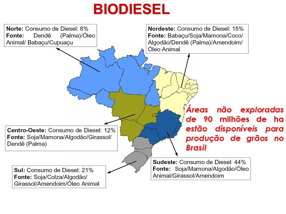 BIODIESEL Áreas não exploradas de 90 milhões de ha estão disponíveis para produção de grãos no Brasil