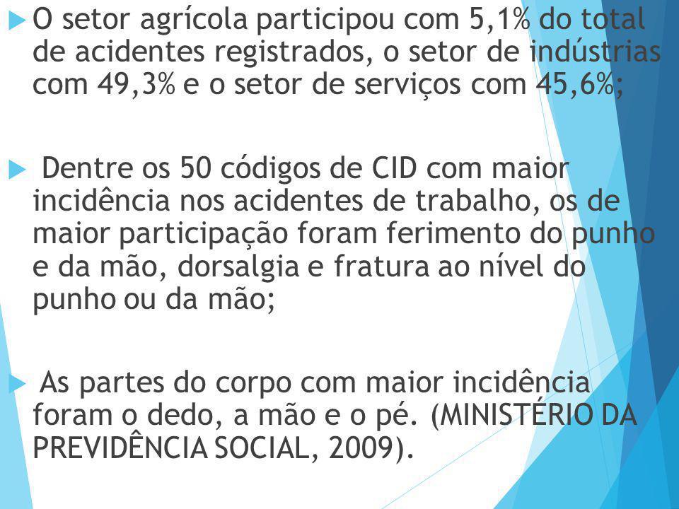  O setor agrícola participou com 5,1% do total de acidentes registrados, o setor de indústrias com 49,3% e o setor de serviços com 45,6%;  Dentre os