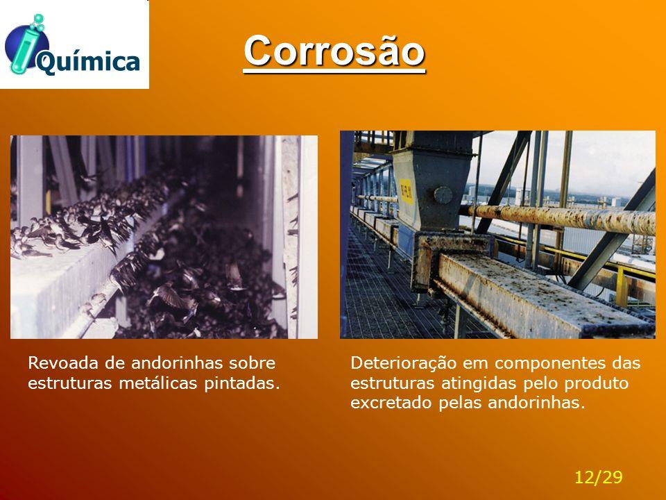 Corrosão Deterioração em componentes das estruturas atingidas pelo produto excretado pelas andorinhas. Revoada de andorinhas sobre estruturas metálica