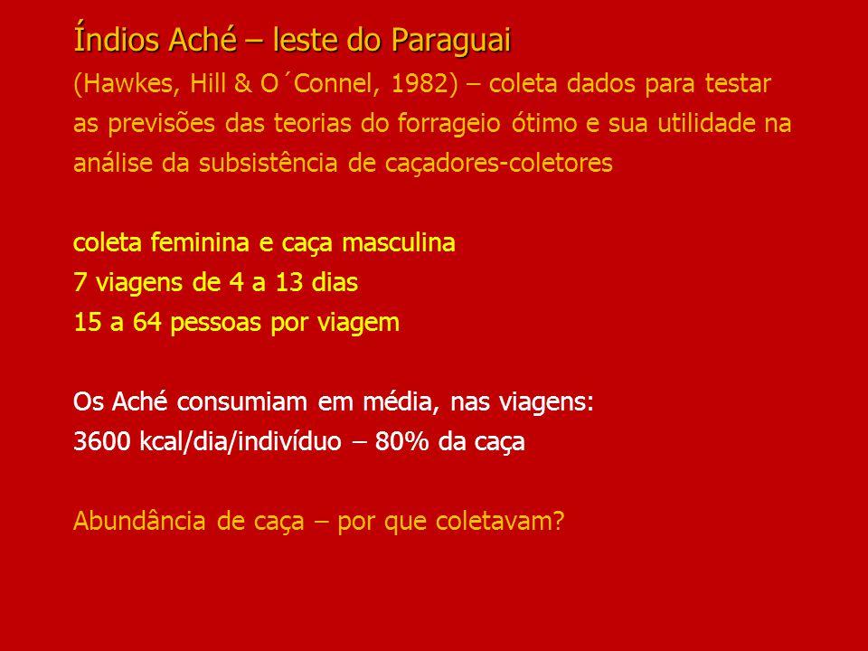Índios Aché – leste do Paraguai Índios Aché – leste do Paraguai (Hawkes, Hill & O´Connel, 1982) – coleta dados para testar as previsões das teorias do forrageio ótimo e sua utilidade na análise da subsistência de caçadores-coletores coleta feminina e caça masculina 7 viagens de 4 a 13 dias 15 a 64 pessoas por viagem Os Aché consumiam em média, nas viagens: 3600 kcal/dia/indivíduo – 80% da caça Abundância de caça – por que coletavam