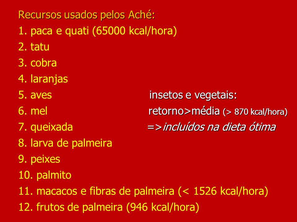 Recursos usados pelos Aché: insetos e vegetais: retorno>média (> 870 kcal/hora) =>incluídos na dieta ótima Recursos usados pelos Aché: 1.