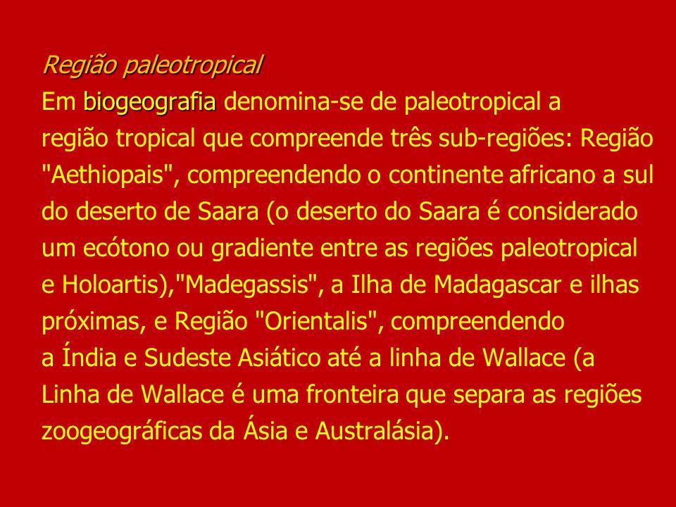 Estudos de forrageio em populações indígenas de florestas neotropicais (Setz, 1989) hipóteses: - acesso randômico - acesso seletivo Estudos de forrageio em populações indígenas de florestas neotropicais (Setz, 1989) estudo da subsistência indígena contemporânea aplicando as teorias de forrageio na América do Sul hipóteses: - acesso randômico (presas caçadas nas proporções em que são encontradas) - acesso seletivo (caça especializada em algumas espécies levando a uma diferença significativa entre proporções das espécies na dieta e no ambiente)