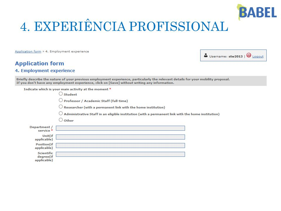 4. EXPERIÊNCIA PROFISSIONAL