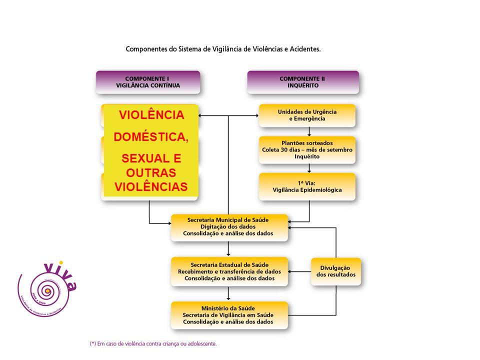 VIOLÊNCIA DOMÉSTICA, SEXUAL E OUTRAS VIOLÊNCIAS