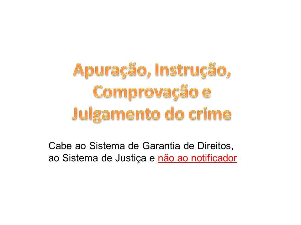 Cabe ao Sistema de Garantia de Direitos, ao Sistema de Justiça e não ao notificador