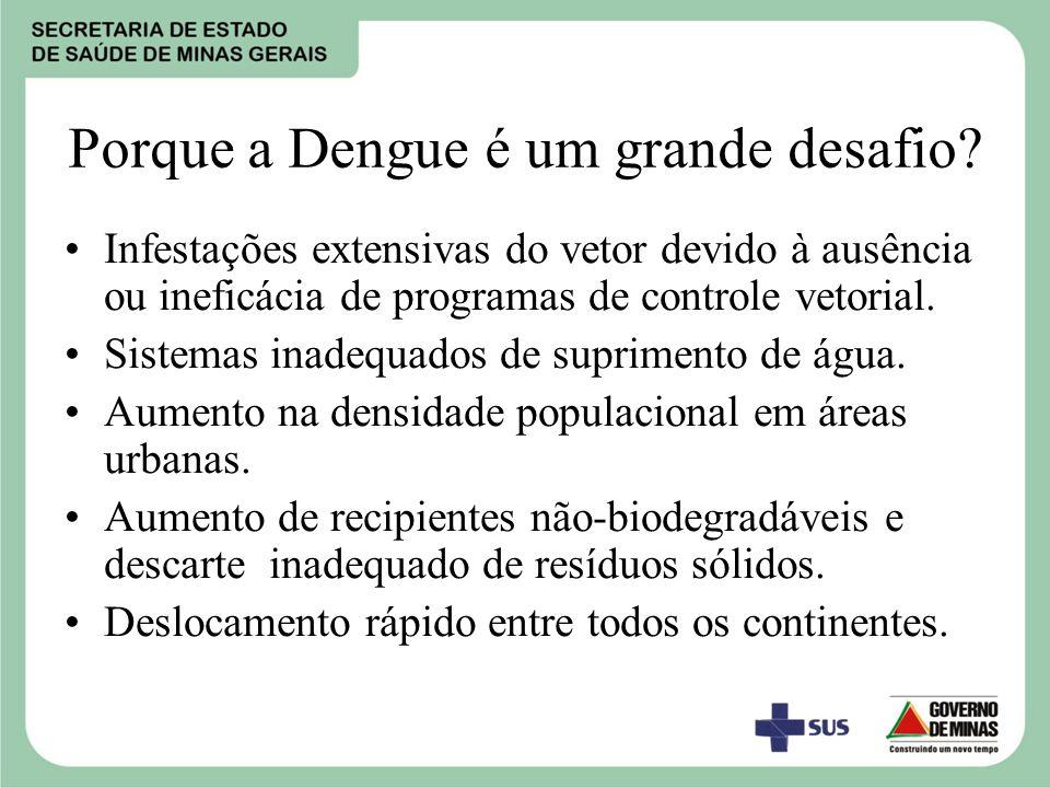Porque a Dengue é um grande desafio.