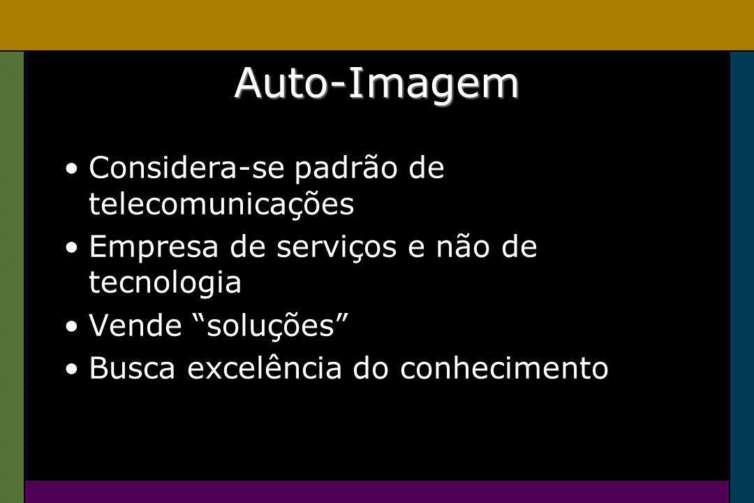 Auto-Imagem Considera-se padrão de telecomunicações Empresa de serviços e não de tecnologia Vende soluções Busca excelência do conhecimento