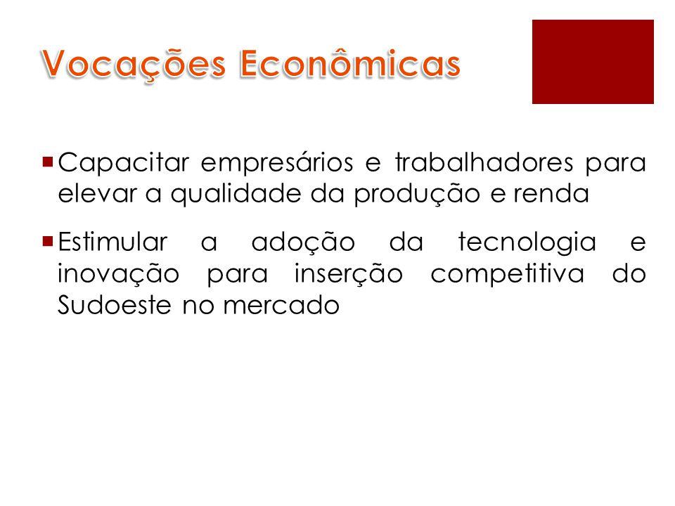  Capacitar empresários e trabalhadores para elevar a qualidade da produção e renda  Estimular a adoção da tecnologia e inovação para inserção compet
