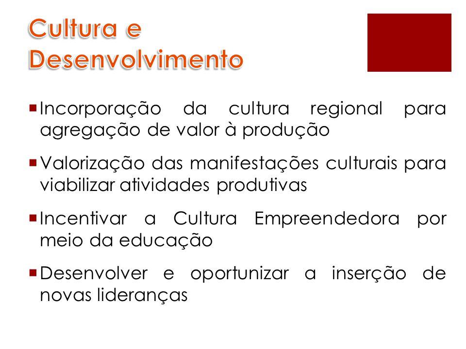  Incorporação da cultura regional para agregação de valor à produção  Valorização das manifestações culturais para viabilizar atividades produtivas  Incentivar a Cultura Empreendedora por meio da educação  Desenvolver e oportunizar a inserção de novas lideranças