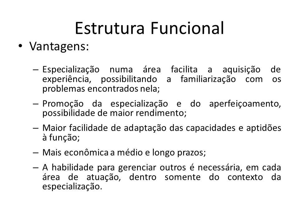 Estrutura Funcional Vantagens: – Especialização numa área facilita a aquisição de experiência, possibilitando a familiarização com os problemas encont