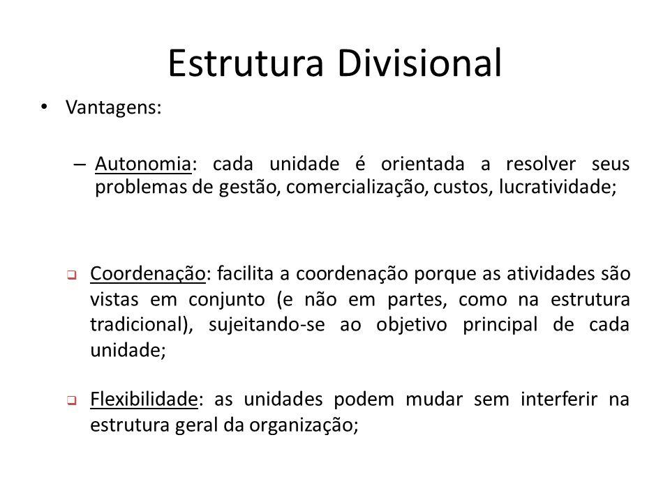 Estrutura Divisional Vantagens: – Autonomia: cada unidade é orientada a resolver seus problemas de gestão, comercialização, custos, lucratividade;  C