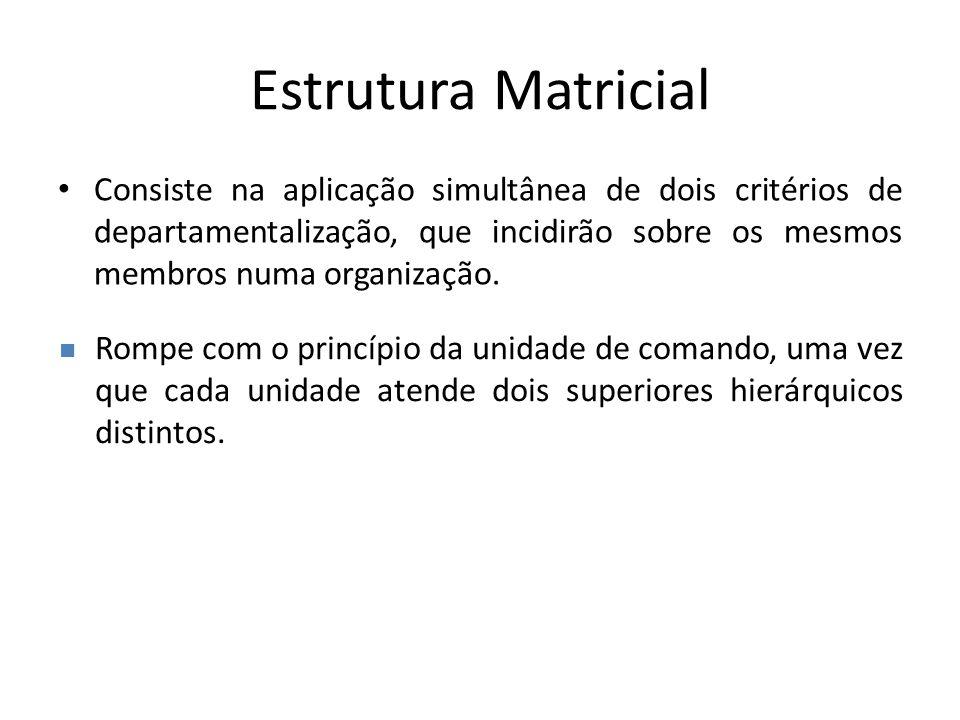 Estrutura Matricial Consiste na aplicação simultânea de dois critérios de departamentalização, que incidirão sobre os mesmos membros numa organização.